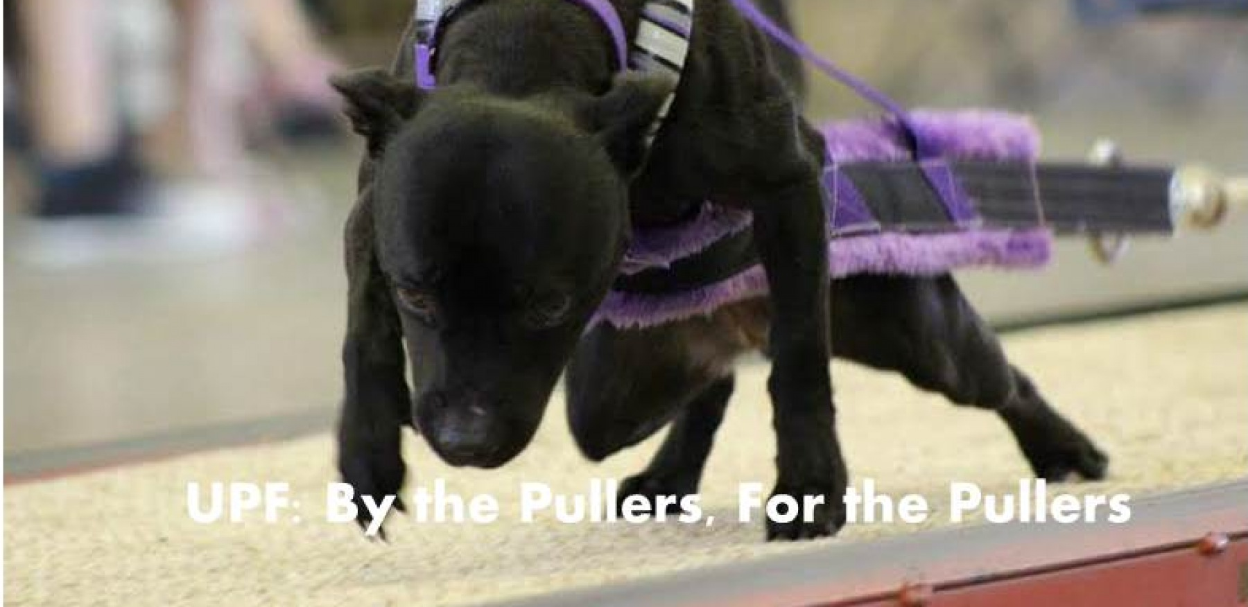 UPF: By The Pullers, For The Pullers
